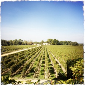 Bordeaux 2013 365